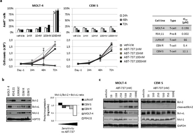 ABT-737 affected cell growth, induced apoptosis and modulated Bcl-2 family protein expression in ALL cell lines.