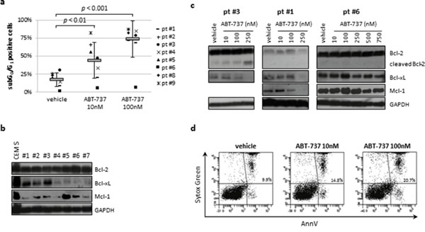 ABT-737 induced apoptosis in ALL primary samples but not in normal CD34+ cells.