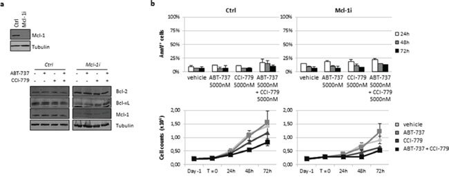 Knockdown of Mcl-1 expression in CEM S cell line failed to enhance drug-induced apoptosis.