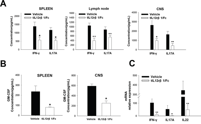 Suppression of related cytokines by tIL12rβ1/Fc treatment.