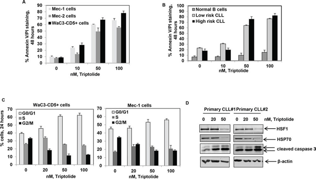 Treatment with triptolide selectively induces apoptosis of cultured and primary CD19+ CLL cells.