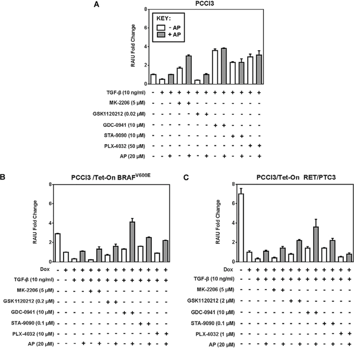 Apigenin counteracts RAIU reduction by TGF-β.