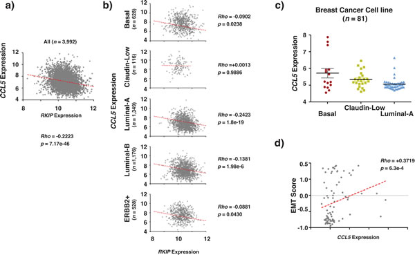 RKIP and CCL5 expression correlate inversely in breast cancer.