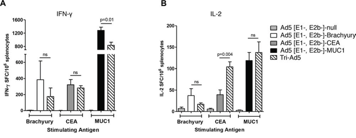 Analysis of IFN-γ− and IL-2−expressing splenocytes following vaccination of mice with Ad5 [E1-, E2b-]- brachyury, Ad5 [E1-, E2b-]-CEA, Ad5 [E1-, E2b-]-MUC1, Tri-Ad5, or Ad5 [E1-, E2b-]-null.