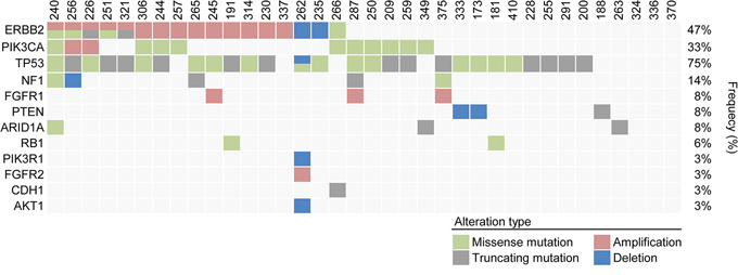Heat map of patients with genetic alterations of 83 genes among 36 refractory MBC patients.
