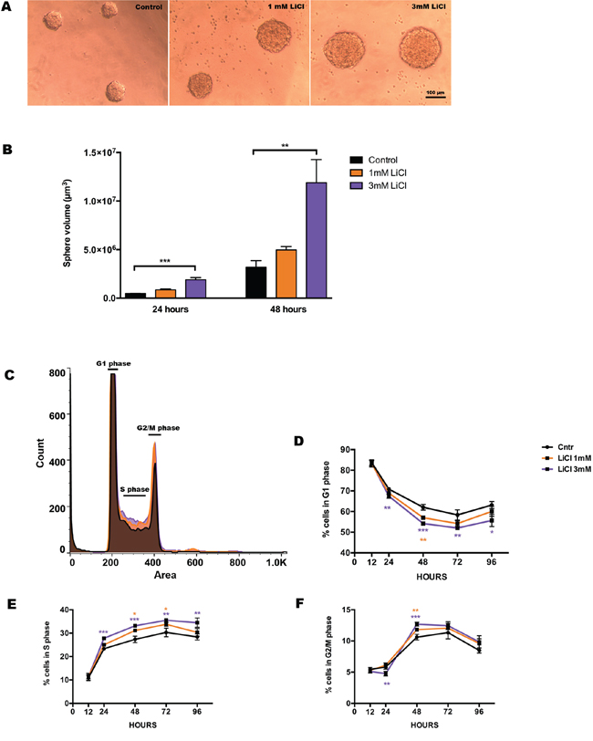 Lithium enhances neurosphere proliferation in a concentration-dependent manner.