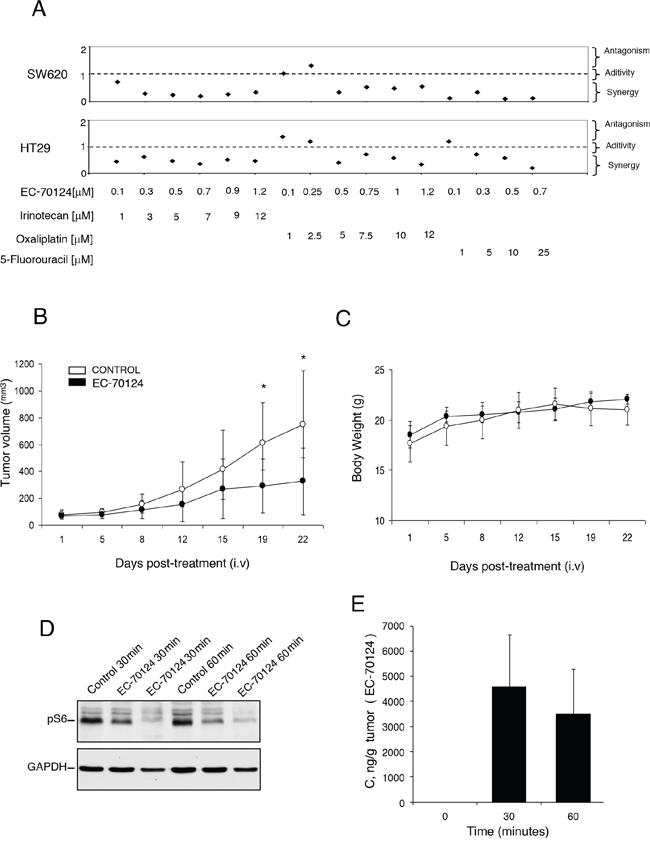 Combinational studies in vitro and in vivo antitumor action of EC-70124.