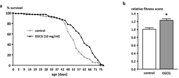 Oncotarget | Epigallocatechin gallate affects glucose