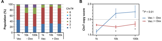 EFEMP1 suppressed the alteration of the cell subpopulation equilibrium