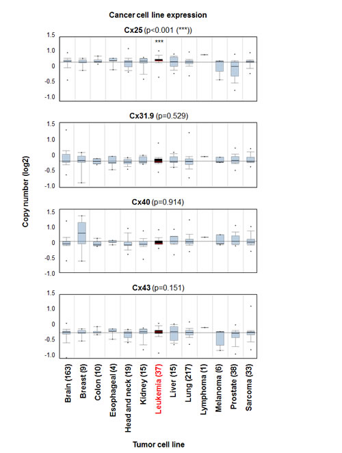 Cx25 expression is elevated in leukemia cell lines compared with additional tumor cell lines and connexin subunits..