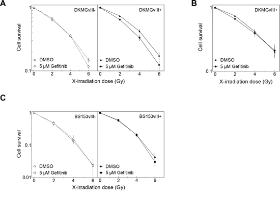 Effect of gefitinib on radiosensitivity.