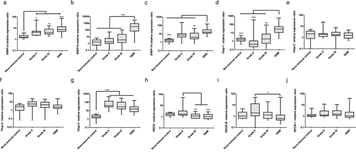 Expression profiles of MMPs, TIMPs and RECK variants in astrocytomas of different grades.