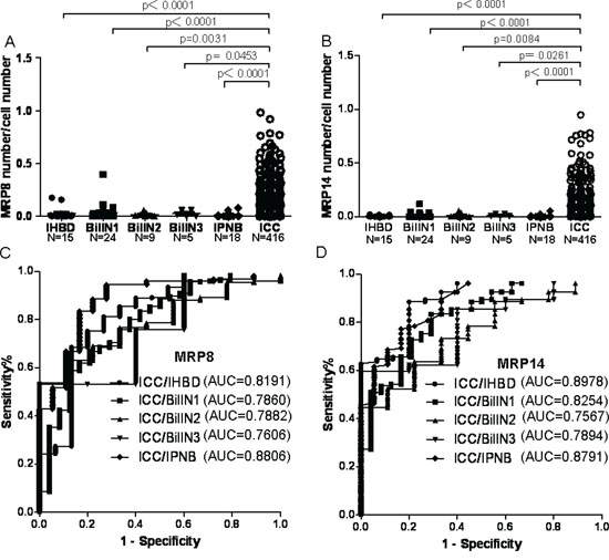 The MRP8 and MRP14 expression level in IHBD, BilIN1, BilIN2, BilIN3, IPNB, ICC and the ROC curve.
