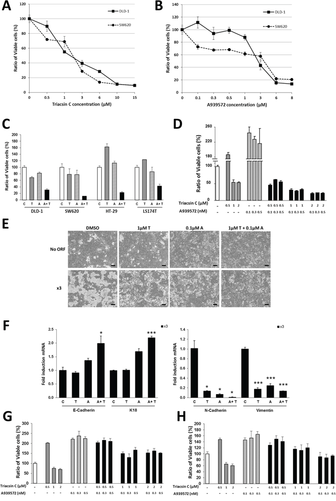 Synergistic effect of ACSL and SCD inhibitors on CRC cells.
