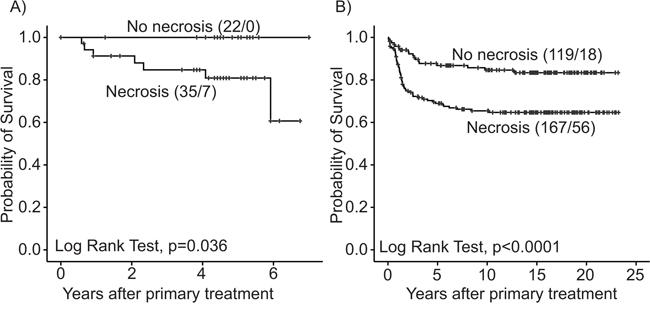 Estimated survival among endometrial carcinoma patients according to tumor necrosis.