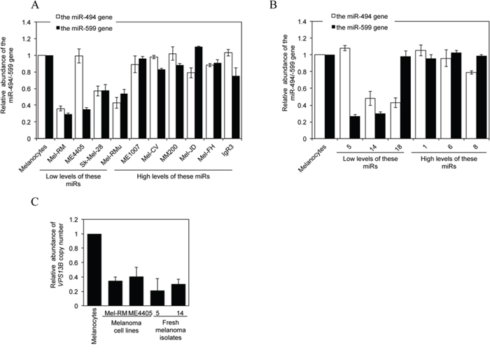 Downregulation of miR-494 or miR-599 in melanoma cells is associated with DNA copy number reduction.