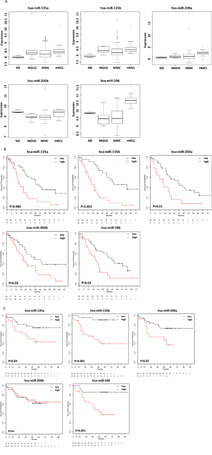 miRNAs associated with survival.
