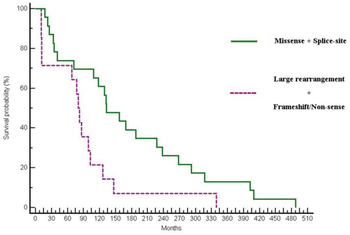 Differences in OS between patients with missense and splice-site mutations vs patients harbouring large rearrangement or truncating mutations (132.46 vs 82.55 months; p = 0.0153; HR:0.46; 95% CI:0.16–0.82).
