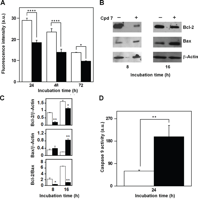 Effect of compound 7 on some apoptotic mitochondrial markers in A2058 cells.