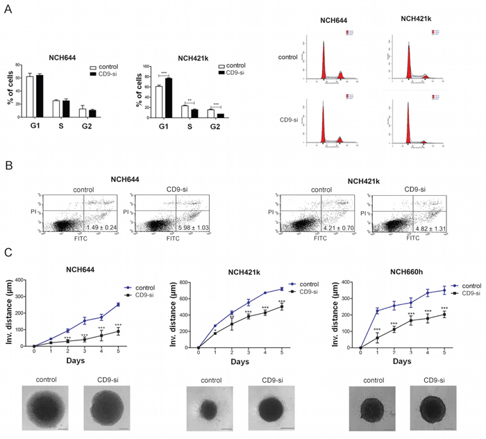 CD9 silencing decreased survival and impaired invasion of GSCs.