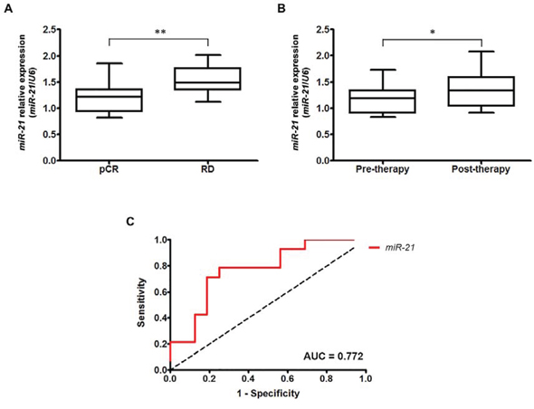 Overexpression of miR-21 in HER2-overexpressing breast cancer is associated with trastuzumab and chemotherapy resistance.