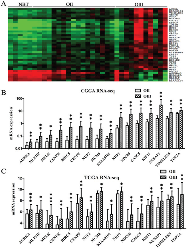 Identifying candidate genes associated with grade progression.