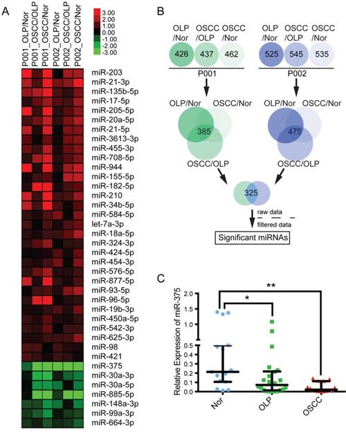 Aberrant miRNAs in OSCC malignant transformation.