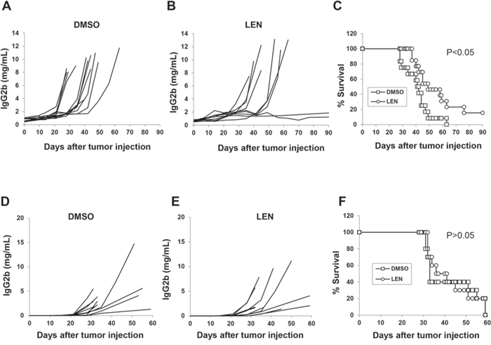 In vivo effect of lenalidomide in myeloma-bearing mice.