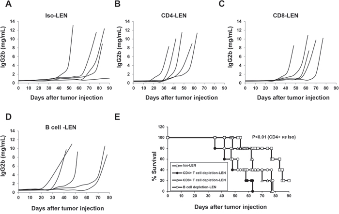 The role of CD4+, CD8+ T and B cells in the lenalidomide-mediated immunomodulatory effect in 5TGM1-bearing C57BL/KaLwRij mice.