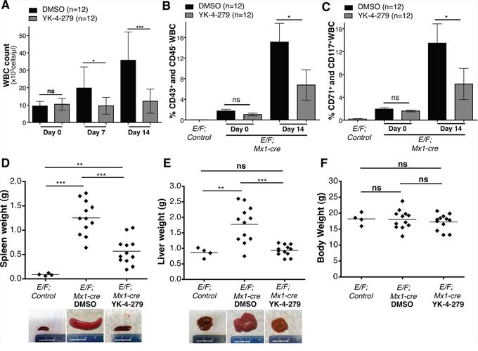 YK-4-279 antagonizes EWS-FLI1 driven erythroleukemia.
