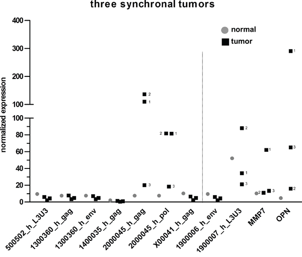 Comparison of HERV-H expression in three synchronal tumors.