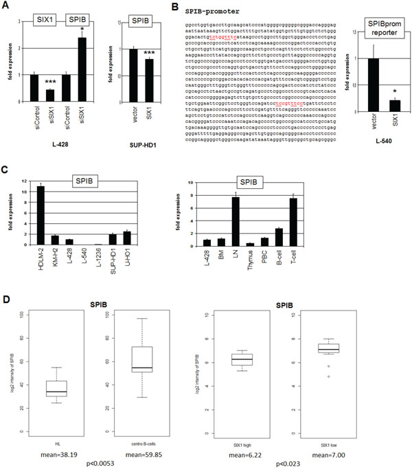 SIX1 inhibits SPIB expression in HL.