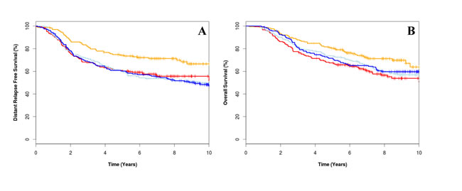 Kaplan-Meier survival curve for low CIN4 score treated with epirubicin plus cyclophosphamide, methotrexate and fluorouracil (E-CMF) (orange line), high CIN4 score treated with E-CMF (red line), low CIN4 score treated with CMF (light blue line) and high CIN4 score treated with CMF (dark blue line) for distant relapse free survival for overall survival (A) and distant relapse free survival (B).