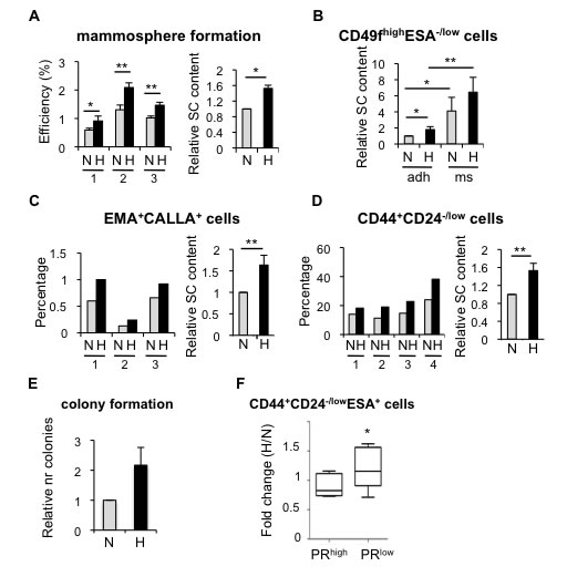Effect of hypoxia in cells isolated from normal or tumor primary tissue.