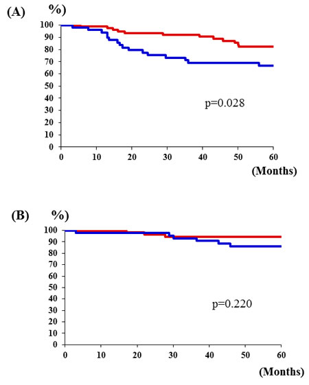 Relationship between PK-R2 expression rates and survival rates by stage of human colorectal cancer patients.