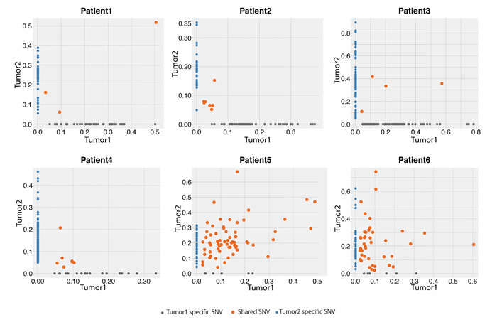 Variant frequency (VAF) distribution of identified SNVs between the first and second tumors from the six pairs of tumors in the exome-sequencing screen.