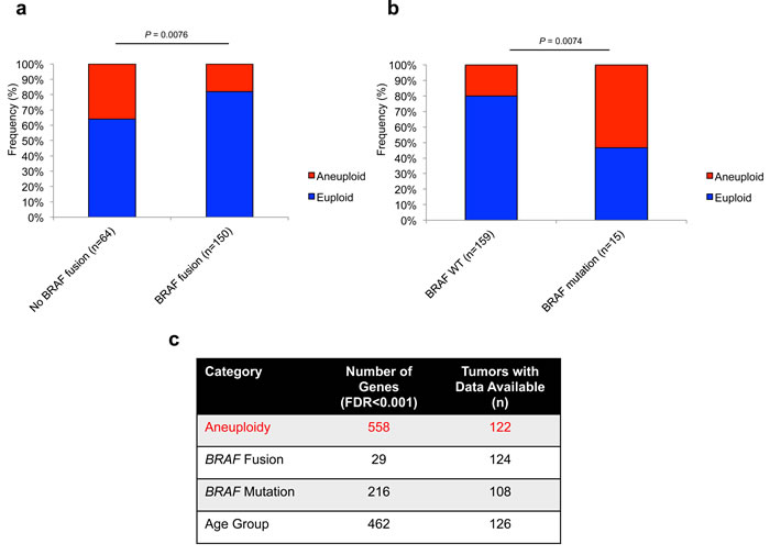 Aneuploidy is differentially associated with prominent MAPK alterations in PA with a strong effect on global gene expression.