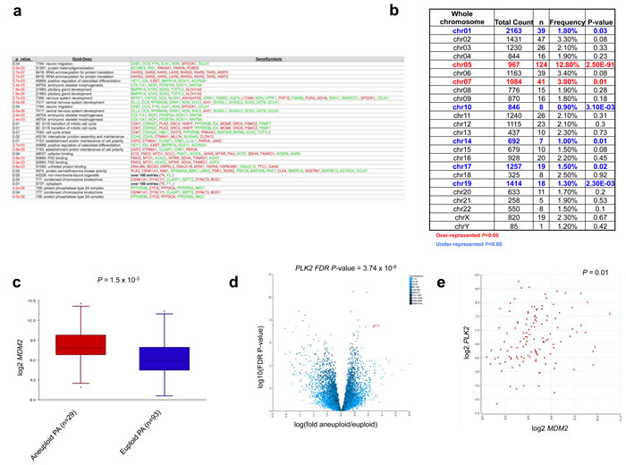 Comparative gene expression analysis identifies specific pathways aberrantly regulated in aneuploid tumors.