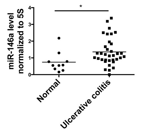 miR-146a expression is elevated in colon tissue from human Ulcerative Colitis (UC) patients.