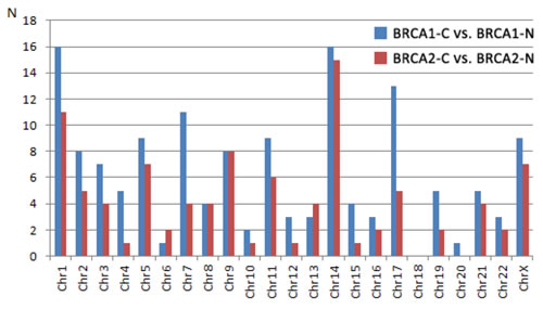 Number of differentially expressed miRNAs per chromosome from the comparison between cancers and normal tissue from BRCA1 and BRCA2 carriers, respectively.