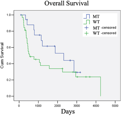 IDH1 mutation is a positive prognostic marker for low-grade glioma patients.