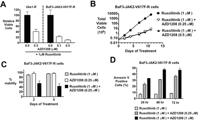 MPN cells that persistently grow in the presence of JAK2 inhibitors are still sensitive to the combination of ruxolitinib and AZD1208.