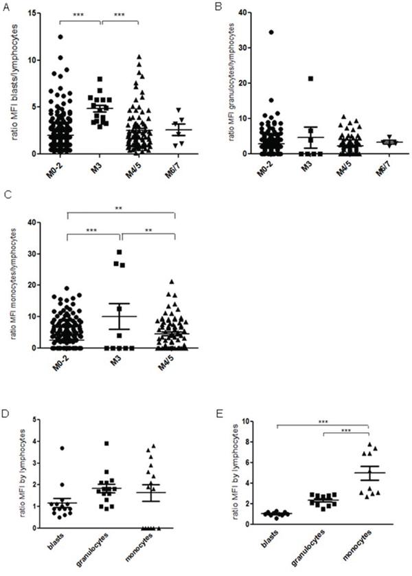 Bone marrow samples of 385 de novo AML patients were investigated by flow cytometry.
