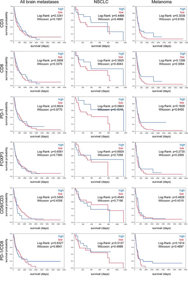 TILs and survival of brain metastasis patients.