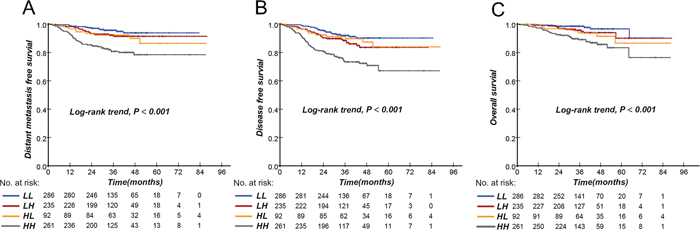 Kaplan-Meier curves of distant metastasis-free survival, disease-free survival, and overall survival according to the combination of pretreatment EBV DNA and SUVmax-N in NPC patients.