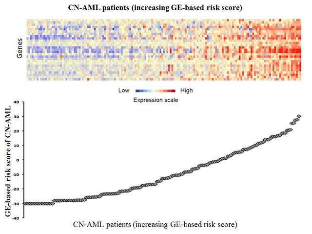 GE-based risk score in CN-AML.
