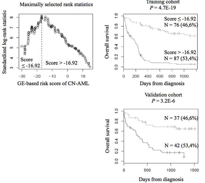 Prognostic value of GE-based risk score in CN-AML.