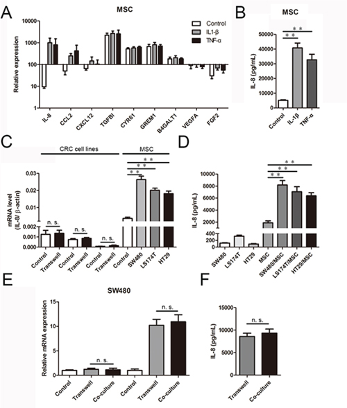 CRC cells induce IL-8 production in MSCs.
