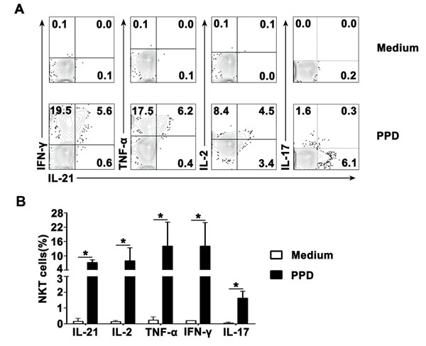Antigen-induced expression of IL-21 with IFN-γ, TNF-α, IL-2 and IL-17 by CD3
