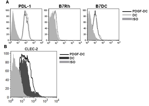 PDGF upregulates the expression of C-type lectin receptor, CLEC-2 on DCs.